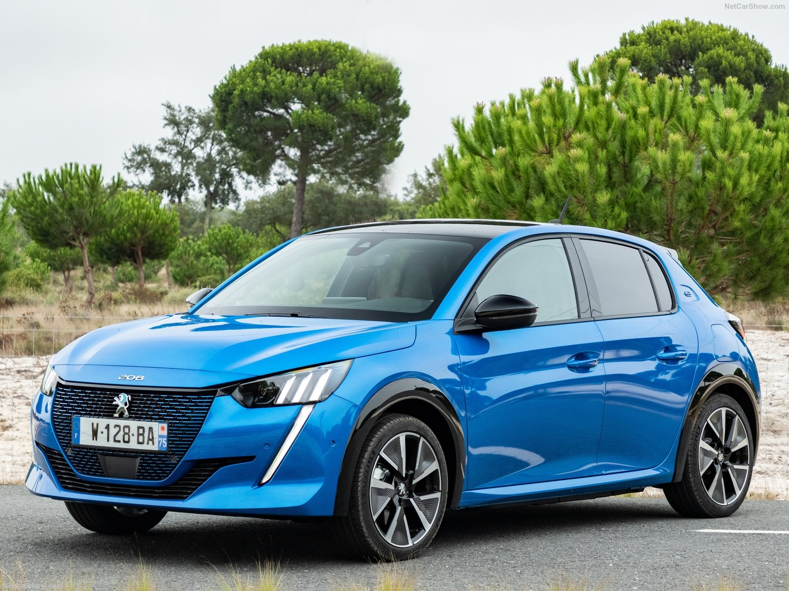 Peugeot-e-208-2020-1600-04